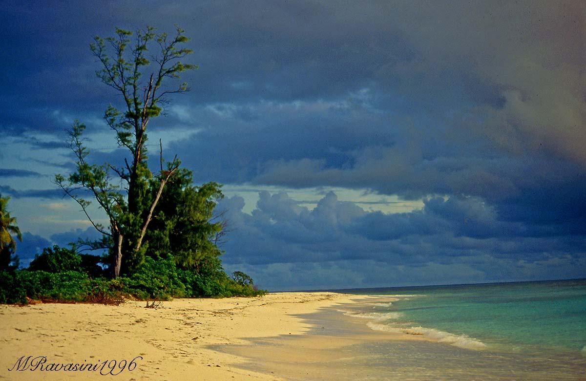 La spiaggia di Bird Island. Questa splendida spiaggia è stata quasi cancellata dallo tsunami.